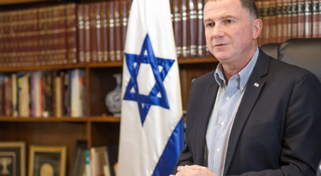 Likud MKs: Recording Shows Edelstein is Disconnected