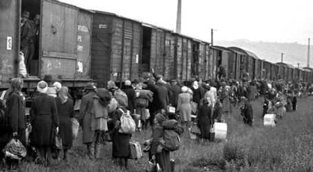 Cattle Cars Stuffed with Human Cargo Became Rolling Death Wagons