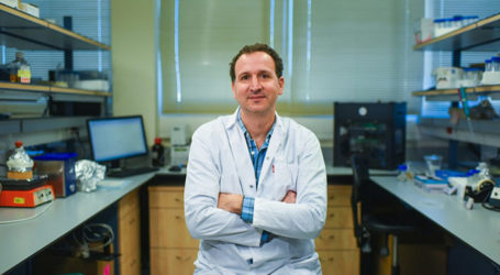 New Drug-Release Method Avoids Harming Healthy Tissue