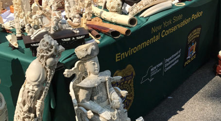 Proposed British Ivory Ban Could Make Millions of Antiques Unsellable