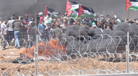 Who's Responsible for These Gaza Deaths? The Hamas & Their Western Media Enablers