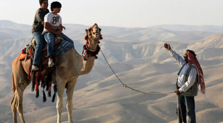 10 Unforgettable Bedouin Tourism Experiences in Israel