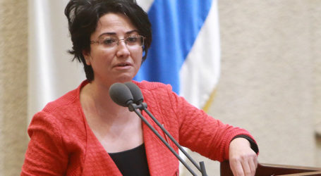 Knesset Says 'No' to Joint List Proposal to Redefine Country as Bi-National State