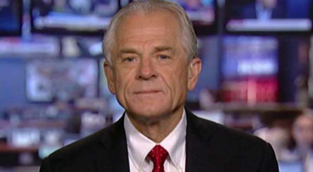 Trump Advisor Navarro Apologizes for 'Special Place in Hell' for Trudeau Comment