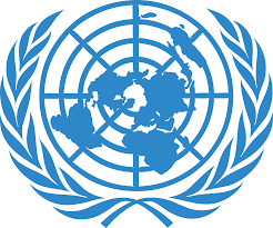 Human Rights at the UN? Think Again!!
