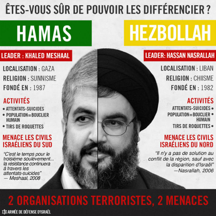 HAMAS AND HEZBOLLAH PDF