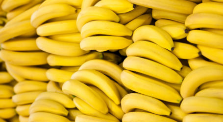 Scientists Warn of Possible Banana Extinction
