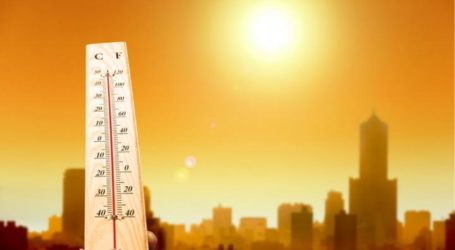 Heat Can Slow Down Brain Processing
