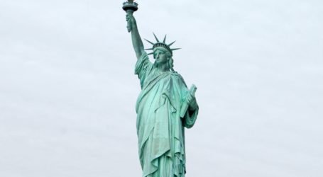 I.C.E Protesters Become Unhinged As Woman Scales Statue Of Liberty