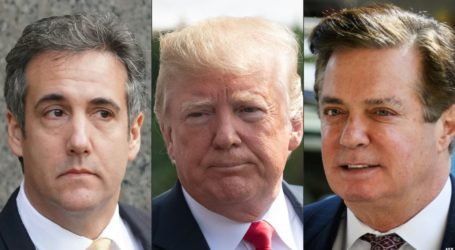 Trump Downplays Manafort & Cohen Becoming Felons
