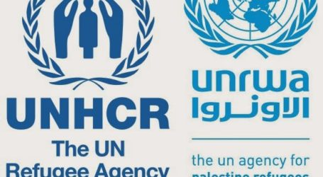 Kushner Looking to End Palestinian Refugy Agency , UNRWA