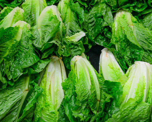 Restaurants and grocery stores across Chicago pull romaine lettuce amid CDC alert